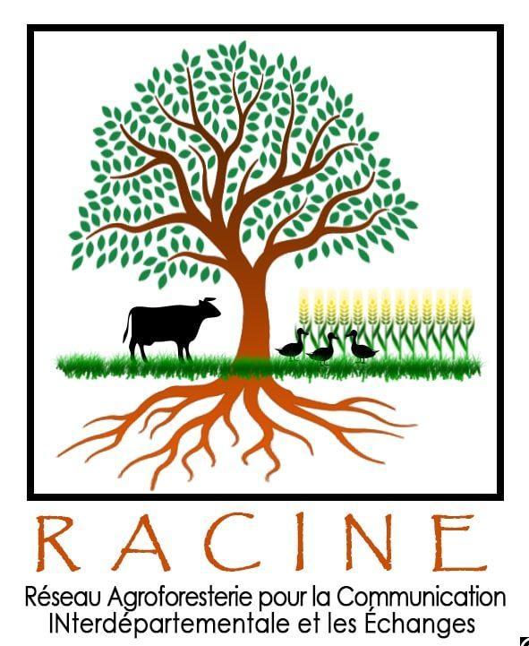 RACINE Réseau Agroforesterie pour la communication interdépartementale et les échanges en Nouvelle-Aquitaine